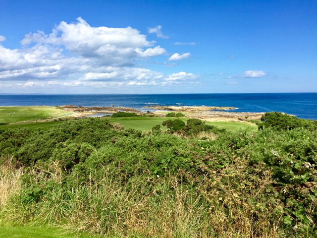 It is views like this, of the 16th green at Balcomie Links, that will keep me coming back to Crail.