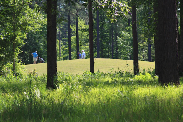 Only Natural: Carolina Colours Combines Golf and Land Design